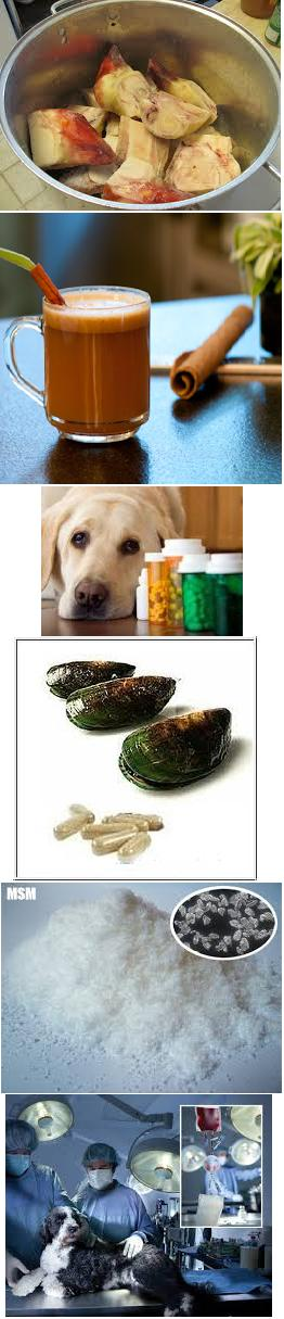 Dog Arthritis Supplement Review Dog Arthritis Supplement includes neutraceuticals, steroids, NSAIDs and last but never the least, Pet Bounce oral spray