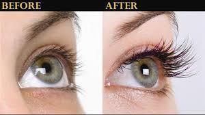 Eyelash Growth Eyelash Growth beginning from eyelash brushing and ending in Idol Lash
