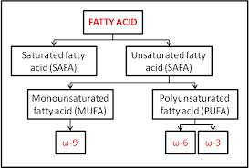 Importance of Fatty Acids Importance of Fatty Acids includes heart and eye disease prevention attainable with Hypercet Omega 3 6 9 intake