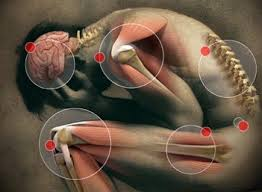 Joint Pain Remedy Joint Pain Remedy includes three types of therapy, i.e., physical, occupational and Joint Advance