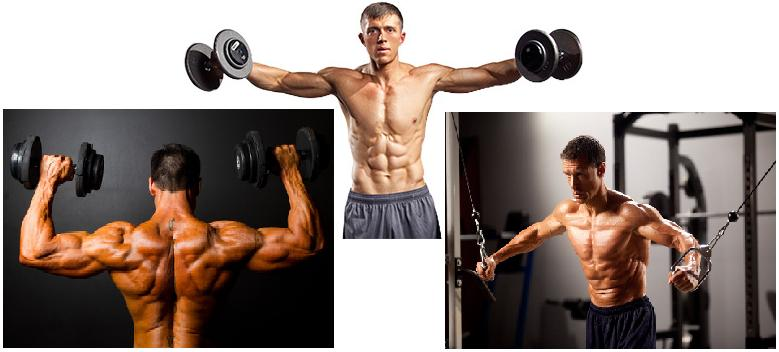 Muscle Growth Tips Muscle Growth happens while resting after workout boosted by Deer Antler Plus supplement