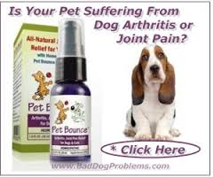Pet Bounce Image 2 Dog Arthritis is a common affliction in dogs, particularly males between 4 and 7 years, efficiently addressed by Pet Bounce supplement
