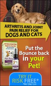 Pet Bounce Short Vertical Banner Dog Arthritis Supplement includes neutraceuticals, steroids, NSAIDs and last but never the least, Pet Bounce oral spray