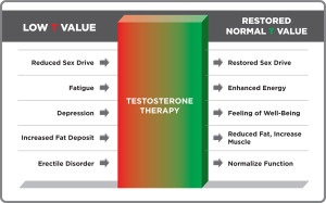 Raising Testosterone Levels 300x187 Testosterone Levels range from low, mid range to high, mid range being the best and attainable via the Pro Testosterone supplement regimen