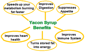 Yacon Syrup Benefits 300x184 Natural Sweetener not only provides health benefits but helps slim the body down
